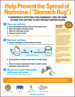 Help Prevent the Spread of Norovirus