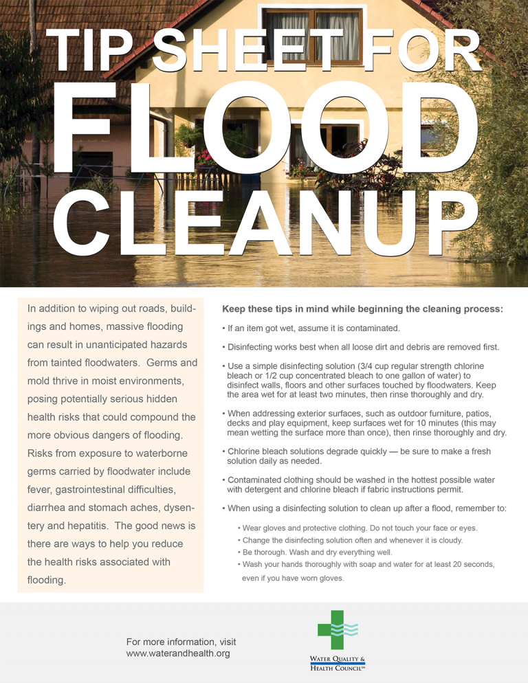 Food cleanup infographic