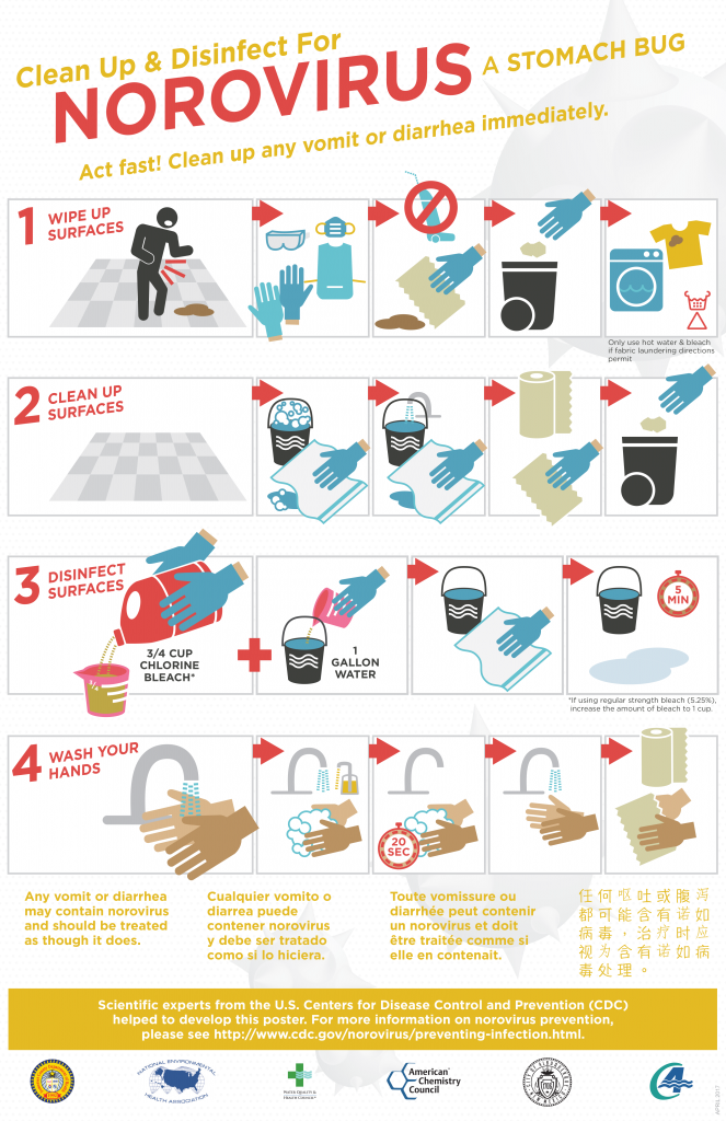 Disinfect for norovirus infographic