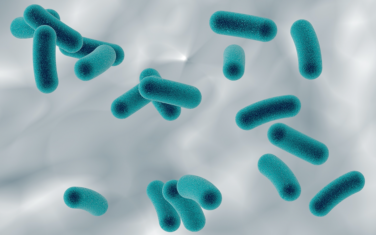 Managing Legionella Bacteria in Building Water Systems: Q&A with Dr